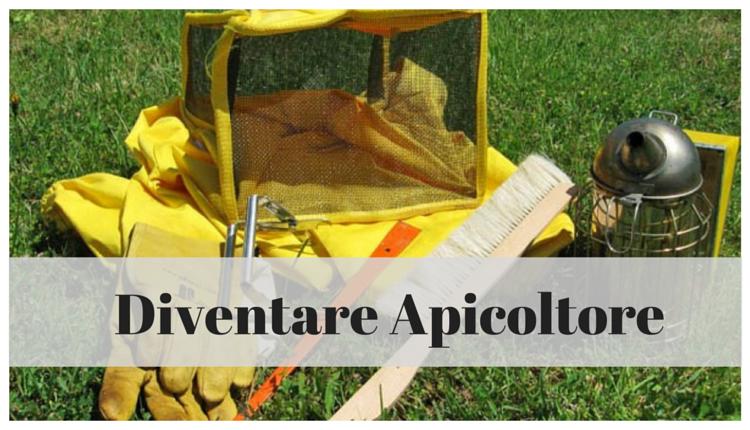 avviare-attivita-apicoltura